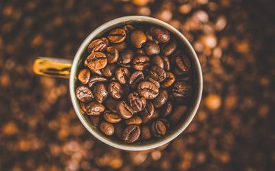UN VIAJE A TRAVÉS DE LOS DISTINTOS TIPOS DE CAFÉ: Parte II